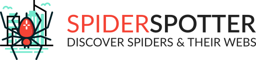 Spider Spotter Citizen Science
